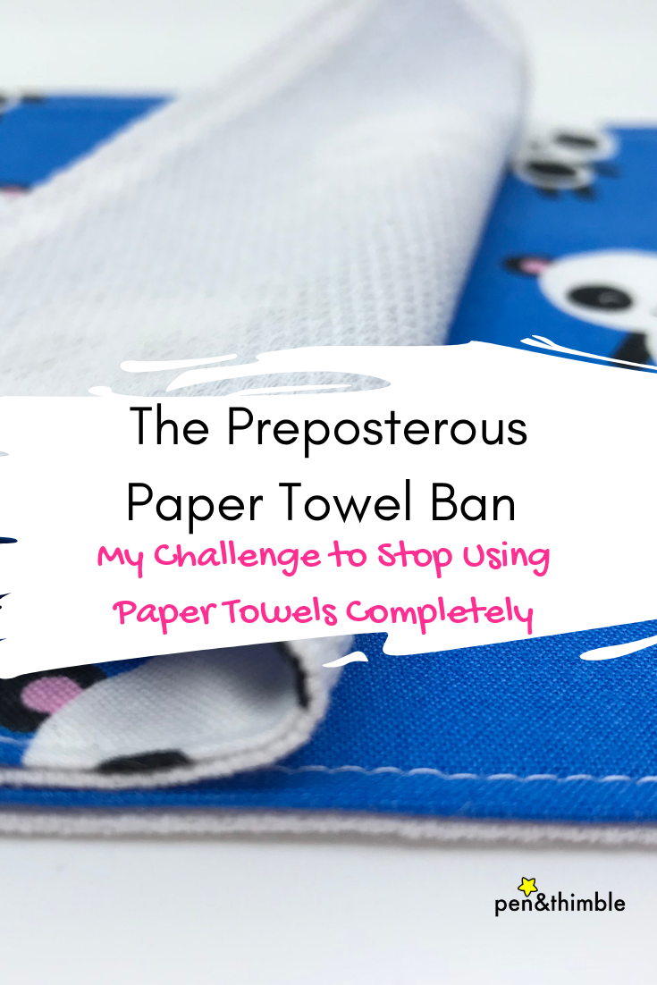 My Challenge to Stop Using Paper Towels Completely